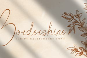 Bordershine Script