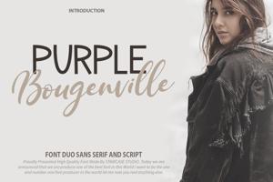 Purple Bougenville Script