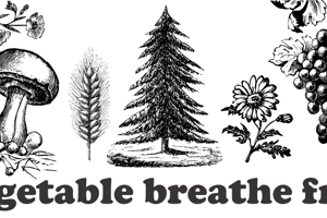 Vegetable Breathe Free