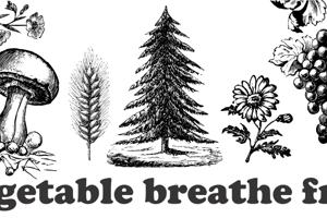 Vegetable Breathe Free