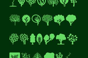 Trees Go 2