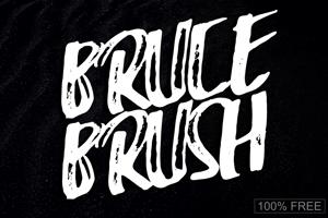 Bruce Brush