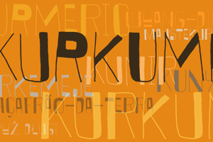 DK Kurkuma