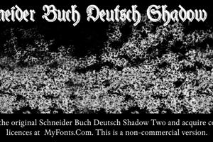 Schneider Buch Deutsch Shadow T