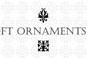 Soft Ornaments Twenty