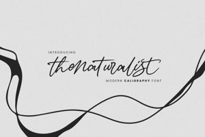 Thenaturalist Font