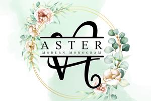 Aster Monogram _