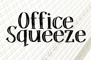 DK Office Squeeze