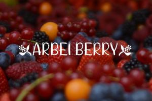 ARBEI BERRY
