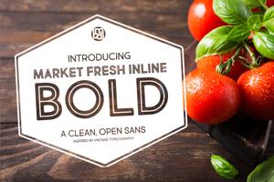 Market Fresh Inline Bold