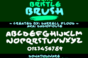 Brisk Bristle Brush