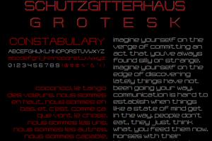 Schutzgitterhaus-Grotesk NBP