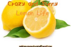 ELF_Crazy_and_Sunny_Lemon_Life