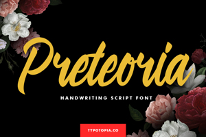 Preteoria