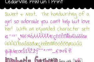 Cedarville Pnkfun 1 Print