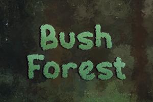 b Bush Forest