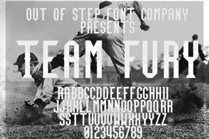 Team Fury