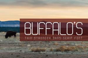 Buffalo 's -