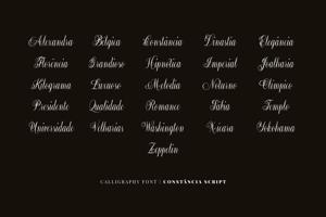 Constancia Script
