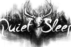 A Quiet Sleep