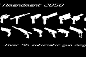 2nd Amendment 2050