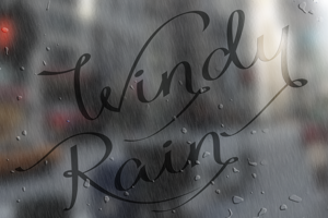 Windy Rain Demo
