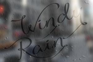 Windy Rain Demo
