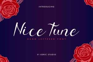 Nice Tune