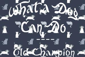 Old Champion