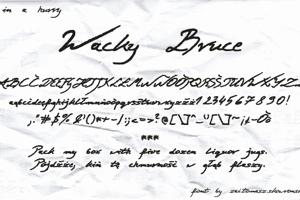 Wacky Bruce