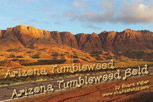 Arizona Tumbleweed