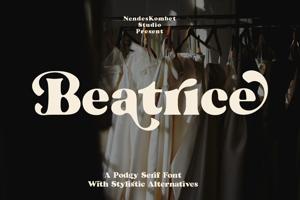 Beatrice - Retro Serif Font