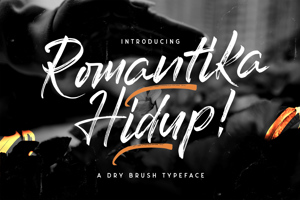 Romantika Hidup