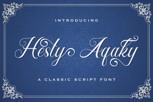 Hesty Aqaky
