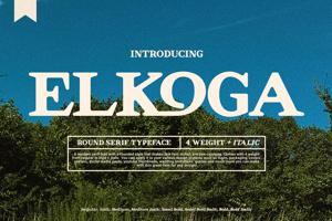 Elkoga