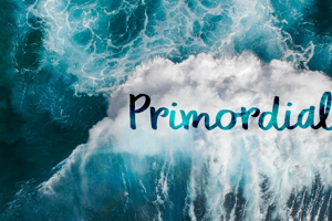 DK Primordial