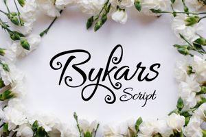 Bykars