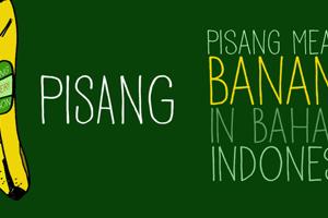 DK Pisang