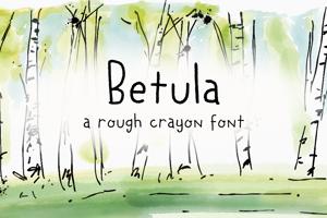 DK Betula