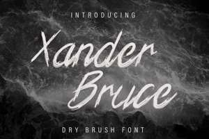 Xander Bruce