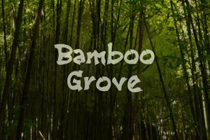 b Bamboo Grove