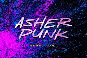 Asher Punk