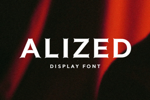Alized Display