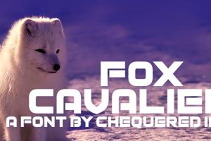 Fox Cavalier