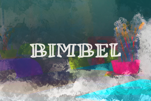 b Bimbel