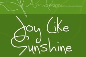 Joy Like Sunshine Through My Wi