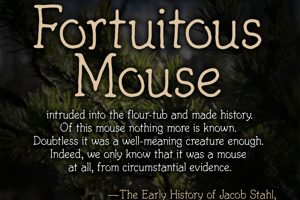 Fortuitous Mouse