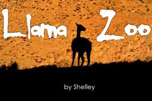 Llama Zoo