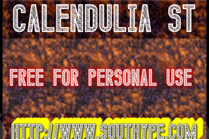 Calendulia St
