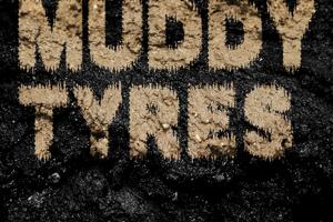 MUDDY TYRES